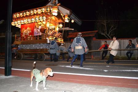 20131011佐倉秋祭り05