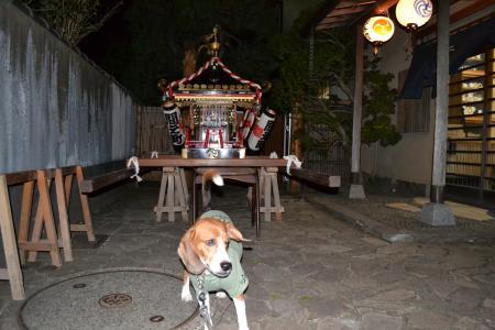 20131011佐倉秋祭り13