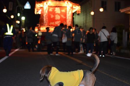 20131012佐倉秋祭り 第2夜02