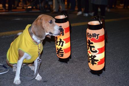 20131012佐倉秋祭り 第2夜08