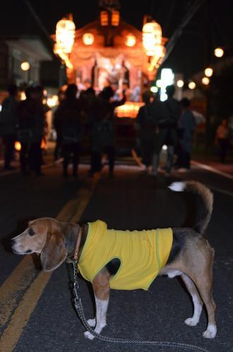 20131012佐倉秋祭り 第2夜07
