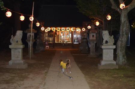 20131012佐倉秋祭り 第2夜18