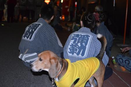 20131012佐倉秋祭り 第2夜16