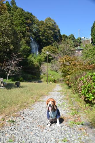 20131027 朝日の滝11