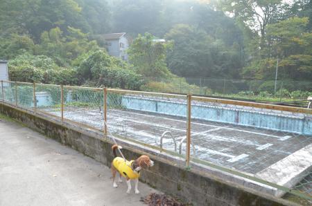20131101沢井小学校03