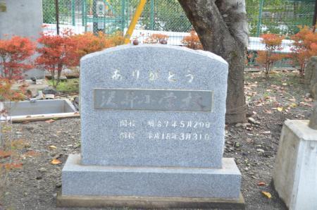 20131101沢井小学校11