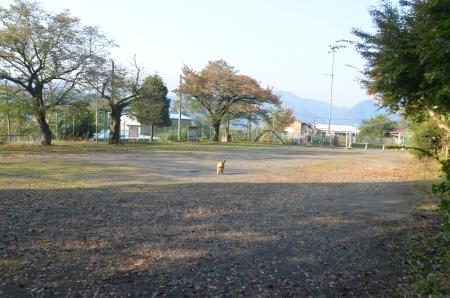 20131101小渕小学校10