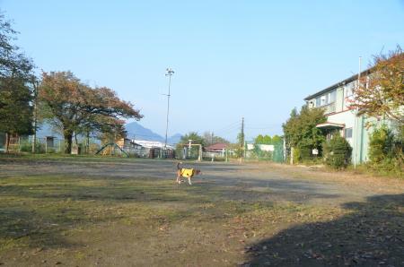 20131101小渕小学校08