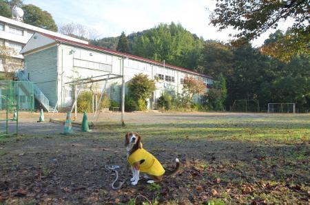 20131101小渕小学校19