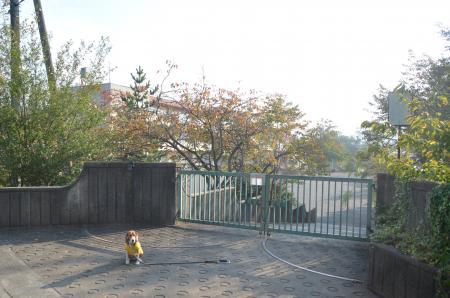 20131101名倉小学校01