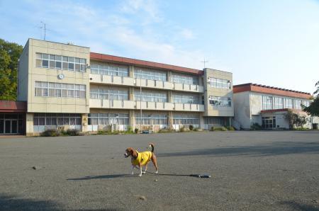 20131101名倉小学校12