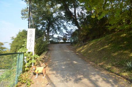 20131101牧郷小学校11