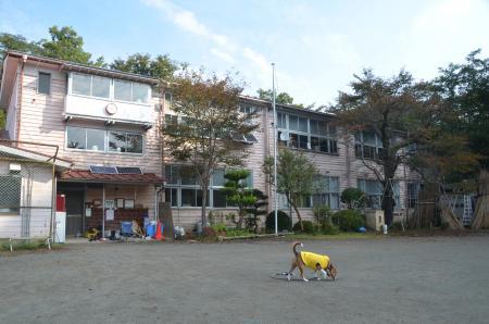 20131101牧郷小学校14