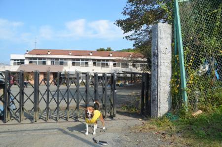 20131101篠原小学校07