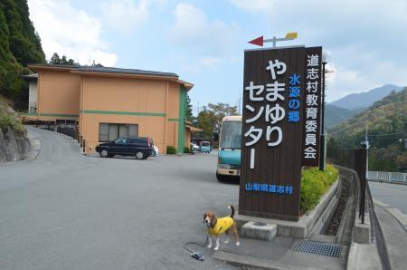20131101唐沢小学校09
