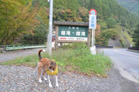 20131101雄滝雌滝01