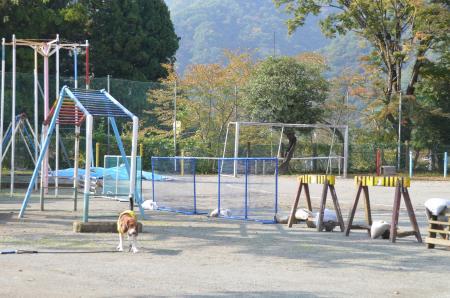 20131101青根小学校08