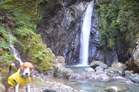 20131101エビラ沢の滝07
