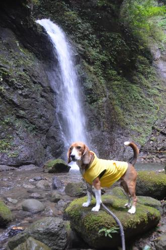20131101寒沢の滝06