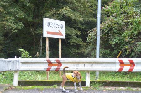 20131101寒沢の滝01