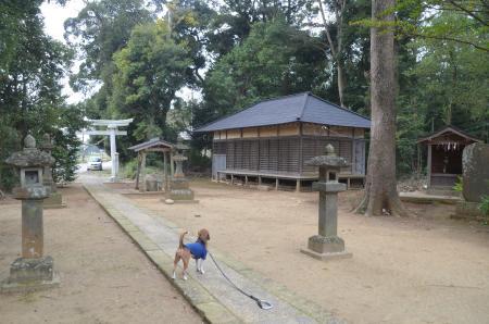 20131102宗像神社 山田10