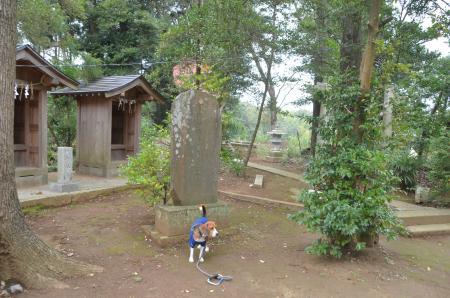 20131102宗像神社 山田09