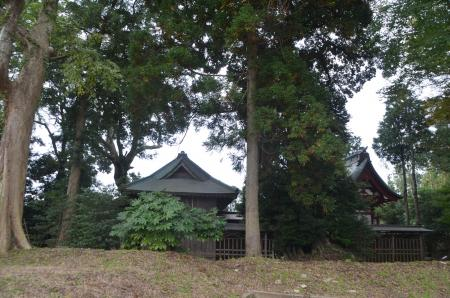 20131102宗像神社 瀬戸13