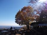 景信山の紅葉