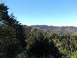 草戸峠から見た高尾山
