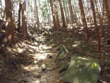 小石や岩の多い登山道