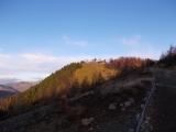 雲取山の頂上付近