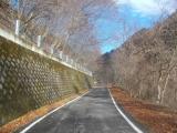 整備された林道