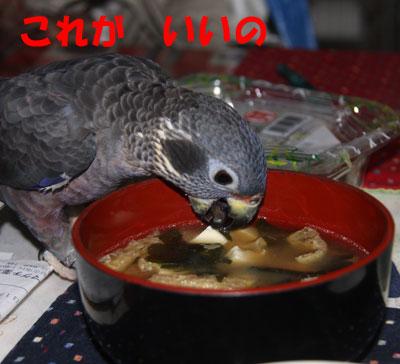 5_ビオレット豆腐