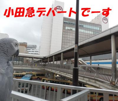 9_町田2