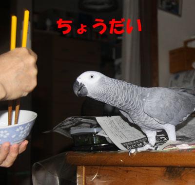 3_朝食2