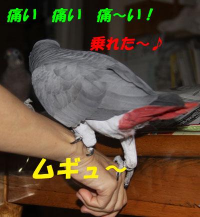 7_朝食6