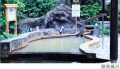 onsen_photo02.jpg