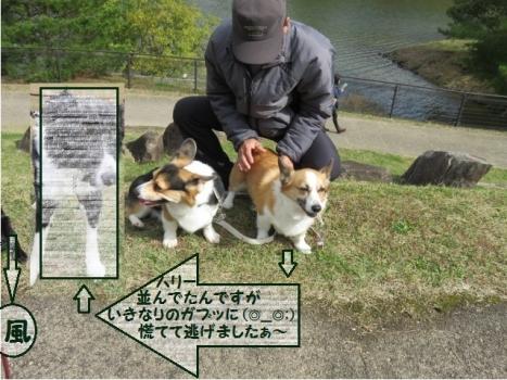 有馬富士公園