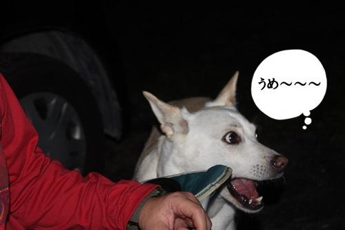 IMG_6097秩父