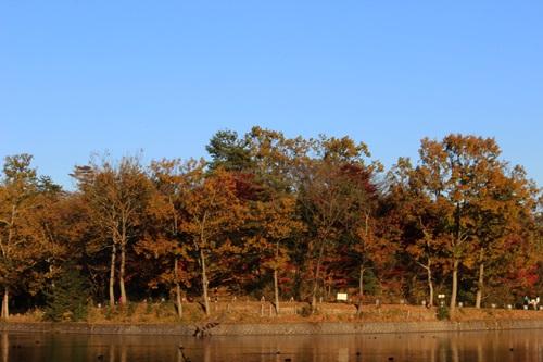 IMG_6433八丁湖