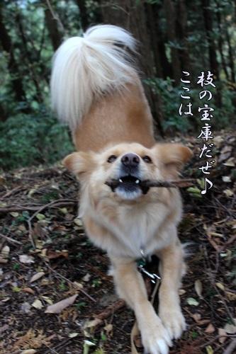 IMG_6540東郷