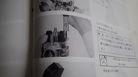 IMGP0323.jpg