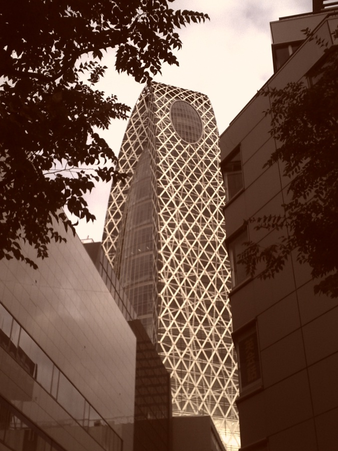 a_At_Shinjuku_20140202150258abe.jpg