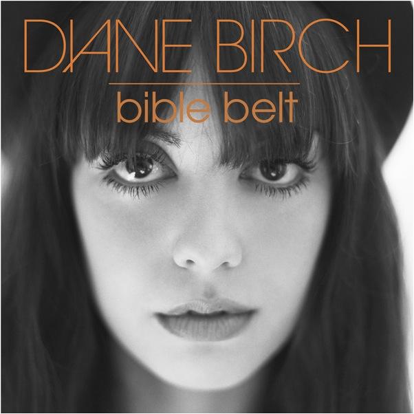 DianeBirch_BibleBelt.jpg