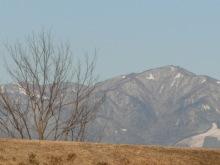 コーチのざわごと-Mt,Oyama