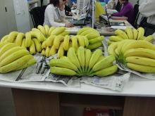 コーチのざわごと-banana