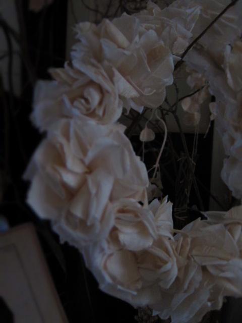 IMG_5243d.jpg