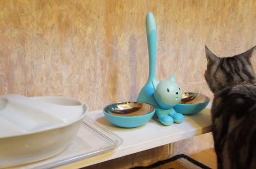 猫の食卓猫食事中