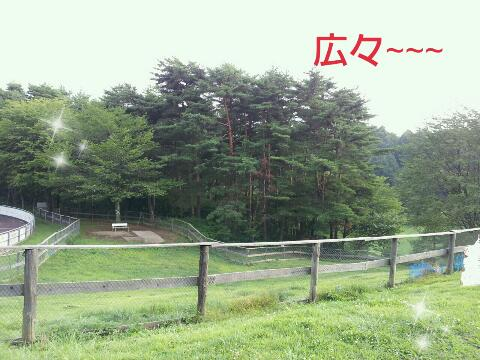 rps20130809_090846.jpg