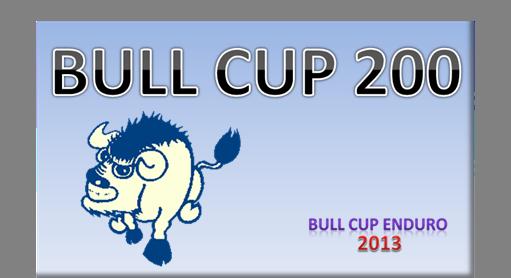 BULL CUP 200